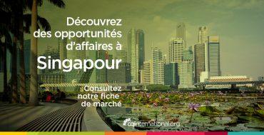decouvrez-la-fiche-marche-singapour-CQI-ACTUALITES