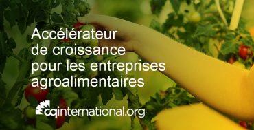accelerateur-CQI-entreprises-agroalimentaires-ACTUALITES-2
